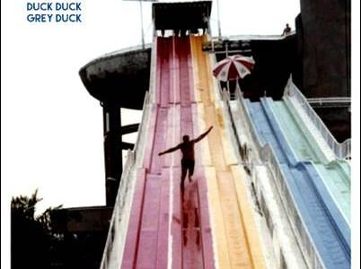Duck Duck Grey Duck – Here Come…