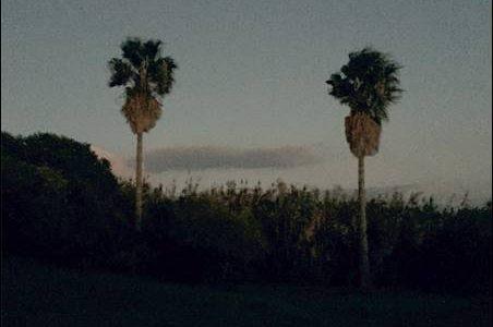 Pajaro Sunrise – The Collapse