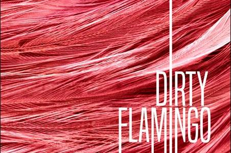 Dirty Flamingo – Dirty Flamingo